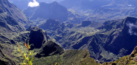 Partez à la Réunion !