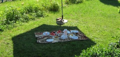 Les indispensables des déjeuners en plein air
