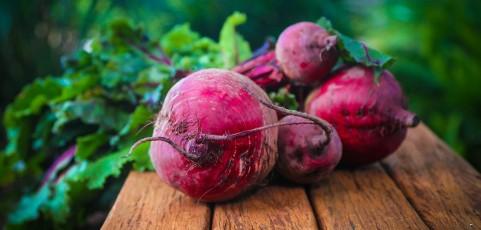 La betterave rouge : un tubercule aux nombreuses vertus