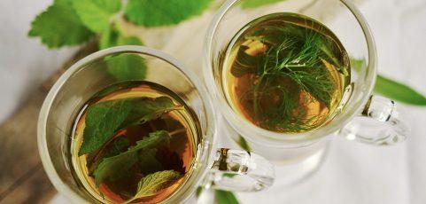 Connaissez-vous le thé vert ?